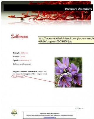 Brochure descrittiva